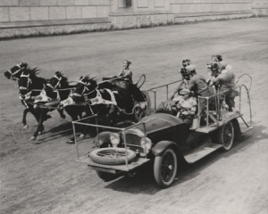 Real chariots, real racing. (image courtesy of Christopher Bird)