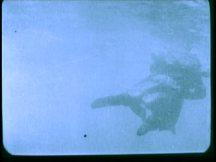 twenty thousand leagues under the sea 1916 image (46)