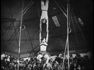 100% genuine circus!